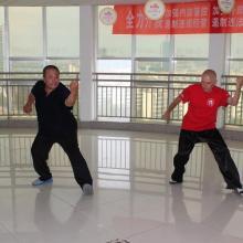 trening z mistrzem Wang